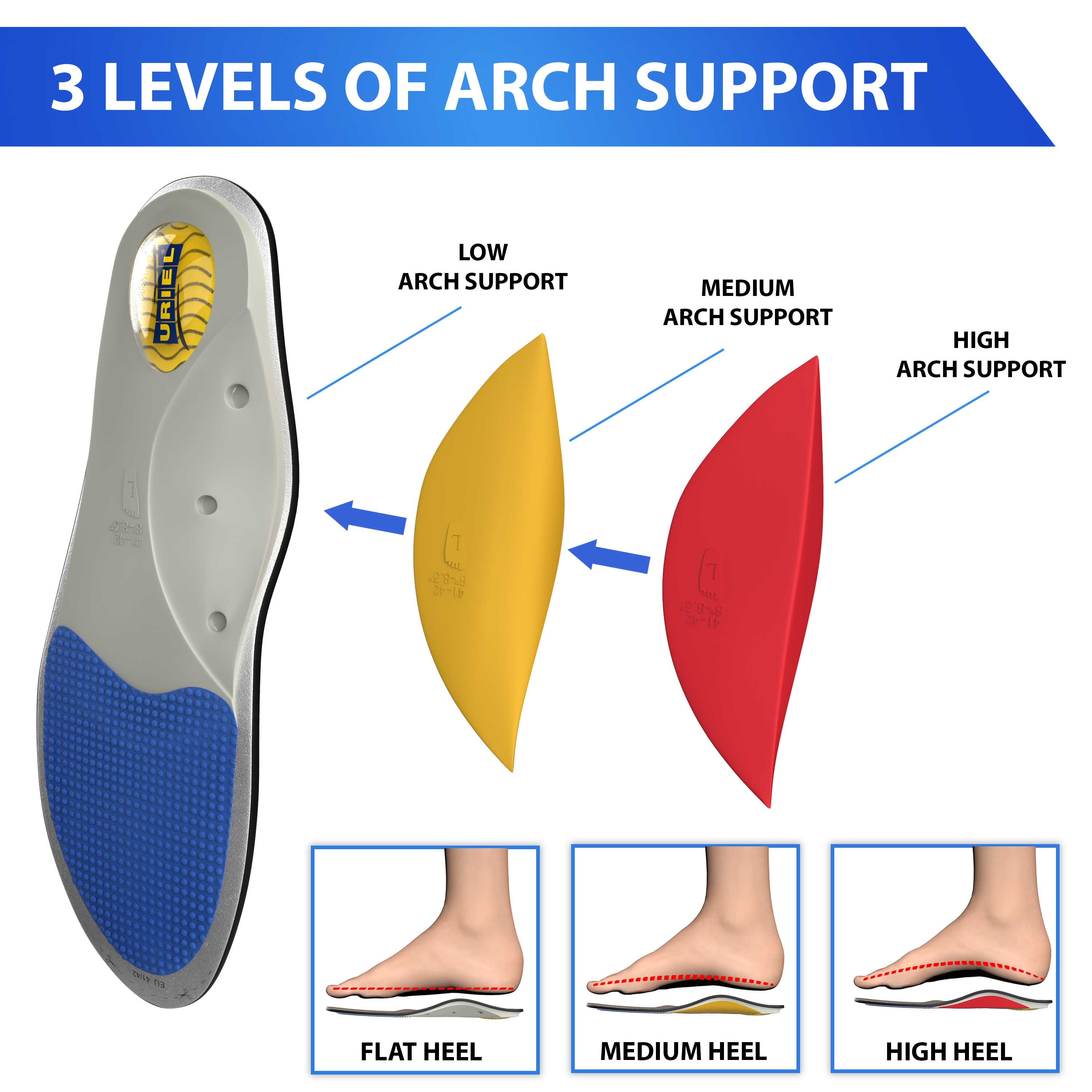 3d insole product model